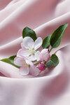 """Схема вышивки  """"Цвет яблони """": таблица цветов."""