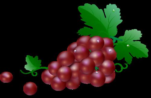виноград (21).png