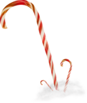 NLD Candy canes.png
