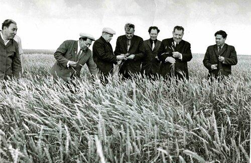 1971 год. Кунаев, Бородин в совхозе им. Баумана Ленинского района