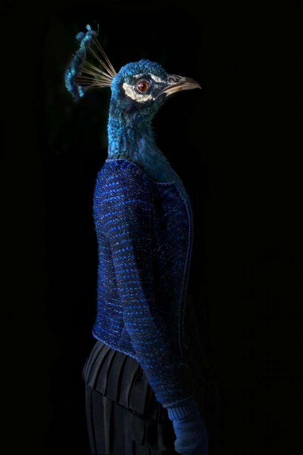 Антропоморфные существа Мигель Вальинас