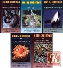 Природа России. Жизнь животных - энциклопедия в 5-томах