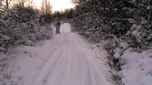 Зимний лесной снайпинг 2012