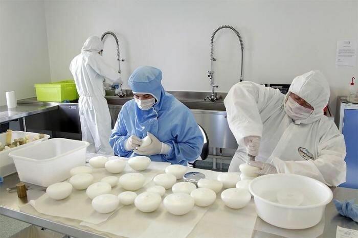 Производство силиконовых грудных имплантатов