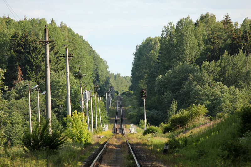 Перегон Осуга - Сычёвка, Московская ЖД, вид на Смоленскую область и платформу 168 км