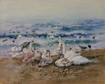 "Шалыгина С. ""Зимовье птиц"". Холст, Масло. 40 x 50 см. 2009г."