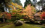 The Japanese Garden at Tatton Park, Cheshire, England