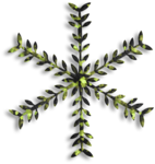 RR_Winter'sBeauty_Element (5).png