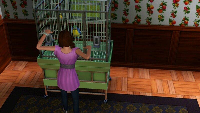 Скриншоты из The Sims 3 0_711cc_d482be36_XL