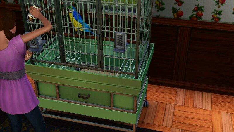 Скриншоты из The Sims 3 0_711cd_58dbe049_XL