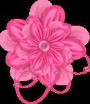 «pretty_in_pink» 0_7d58e_619e290b_S