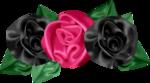 «pretty_in_pink» 0_7d5b8_3aba6d50_S