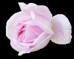 «романтика» 0_7dd62_1fea187a_S