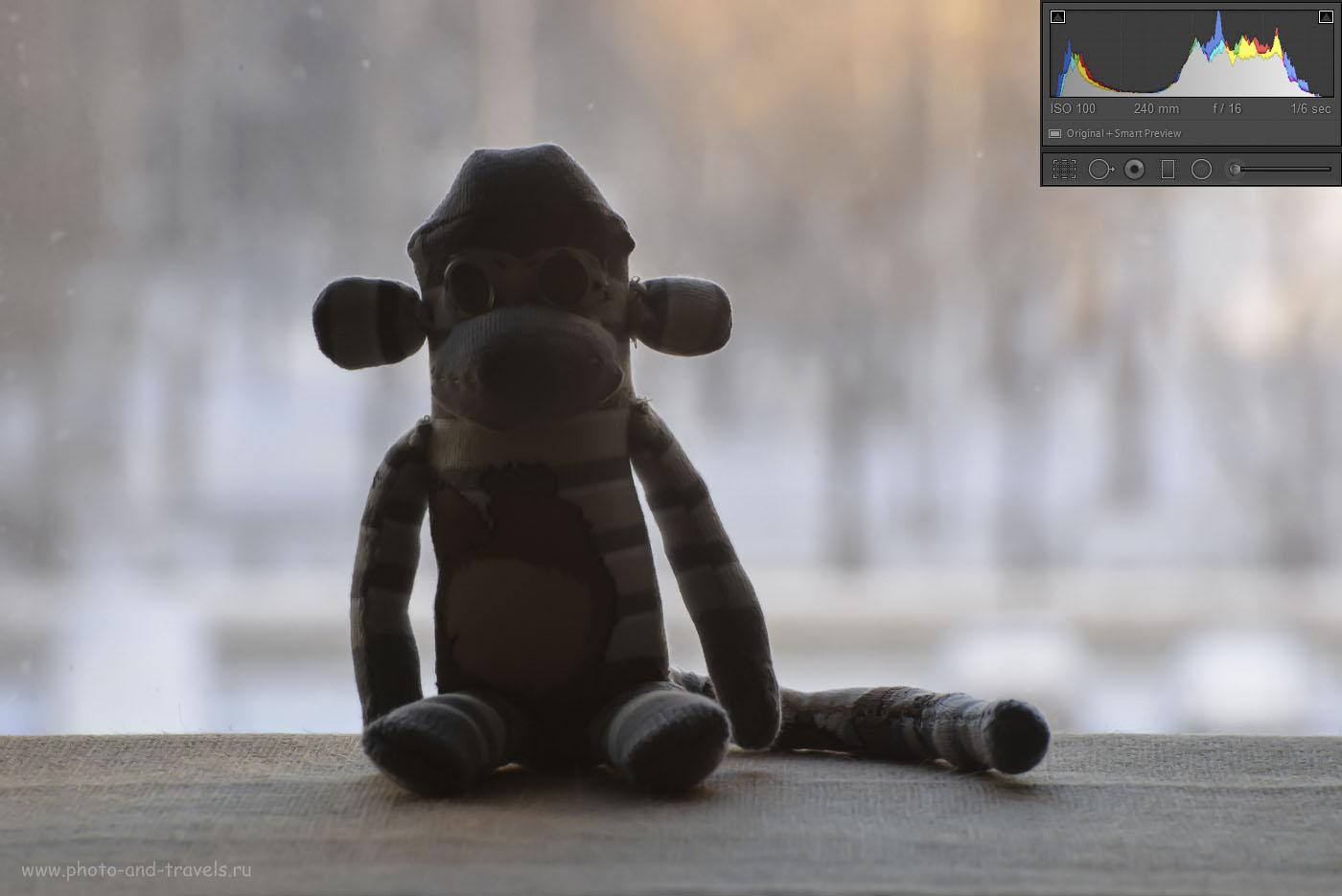 Фотография 25. Использование режима Активный Д-Лайтинг в позиции «Авто» на зеркалке Nikon D610. Параметры съемки: 1/6, 0EV, 16.0, 100, 240.