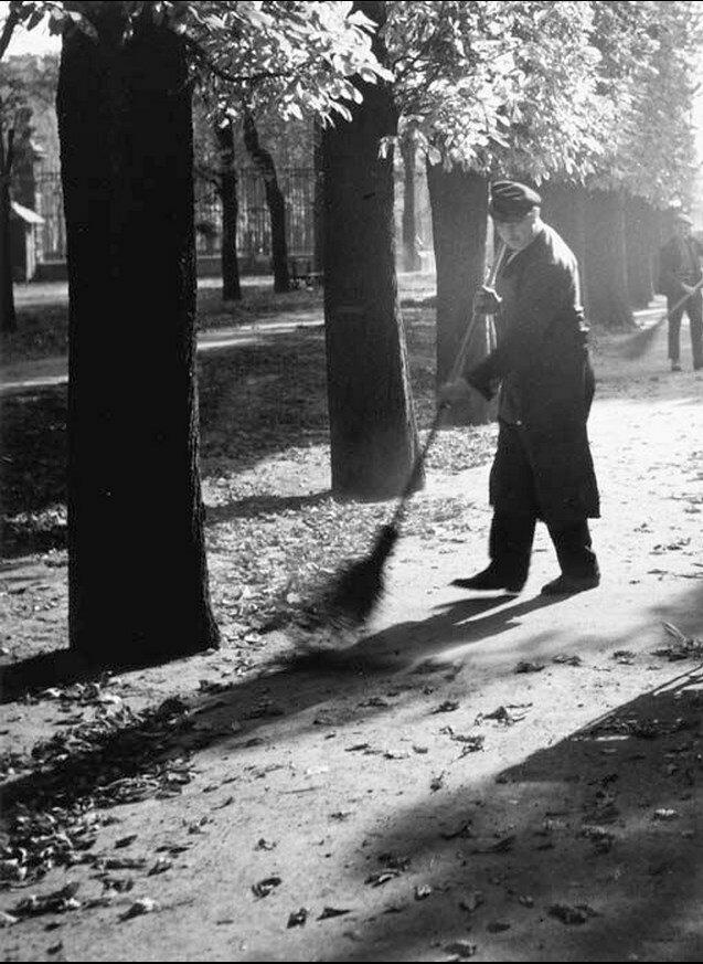1933. Садовник подметает листья