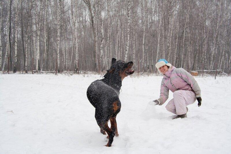 http://img-fotki.yandex.ru/get/5502/gloriy-a.25/0_58853_1f056985_XL.jpg