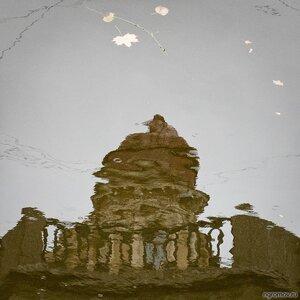 Дождь в отражении (дождь, отражение)