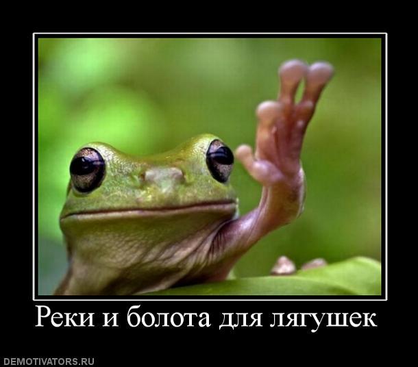 Реки и болота для лягушек