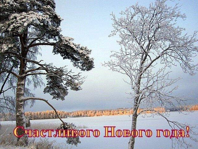 Varkaus lake Unnukka nature winter snow trees Finland new_year postcard