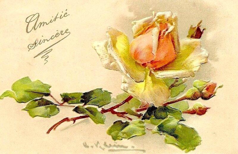 К. Кляйн.    Роза.   В знак дружбы.
