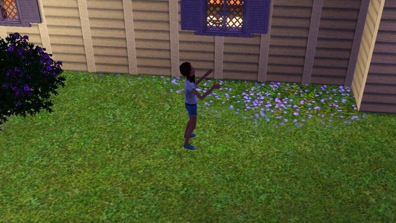 Скриншоты из The Sims 3 0_711da_3645f7d9_XL