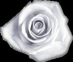 «черно-красная романтика» 0_7d9d0_60b8edf0_S
