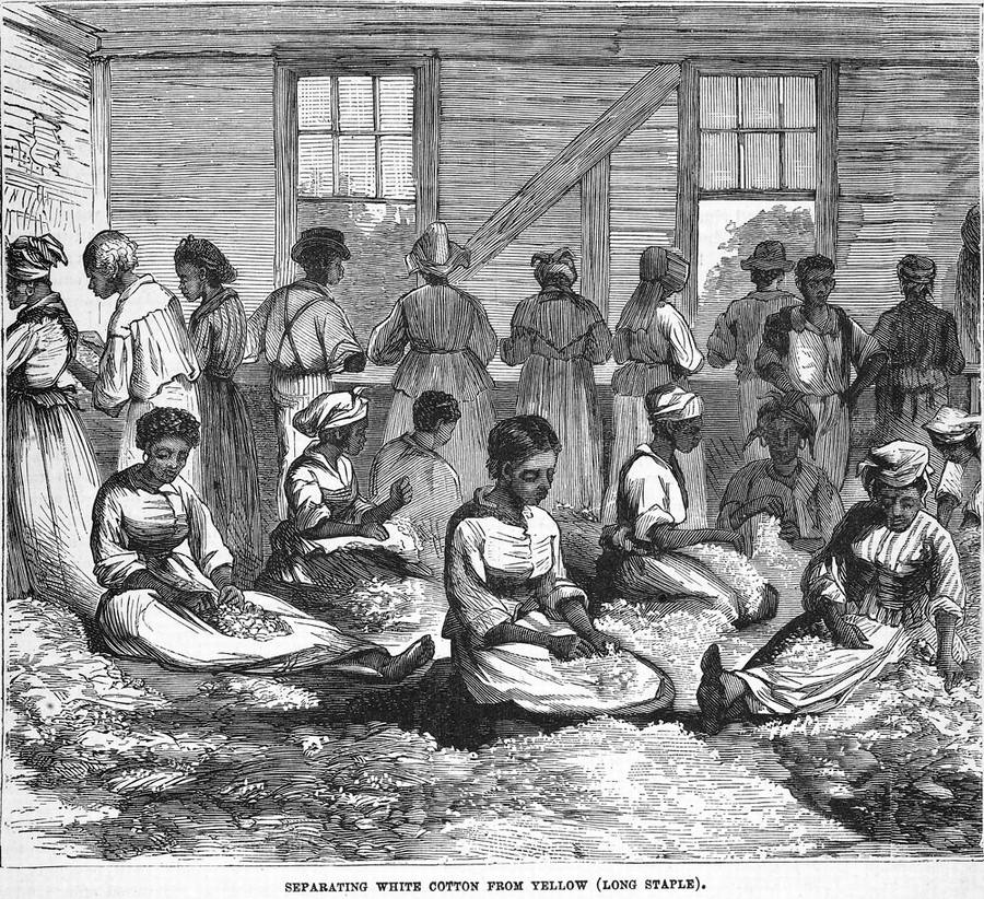 Рабы занимаются разделением волокон хлопка (штат Южная Каролина, 1880 год)