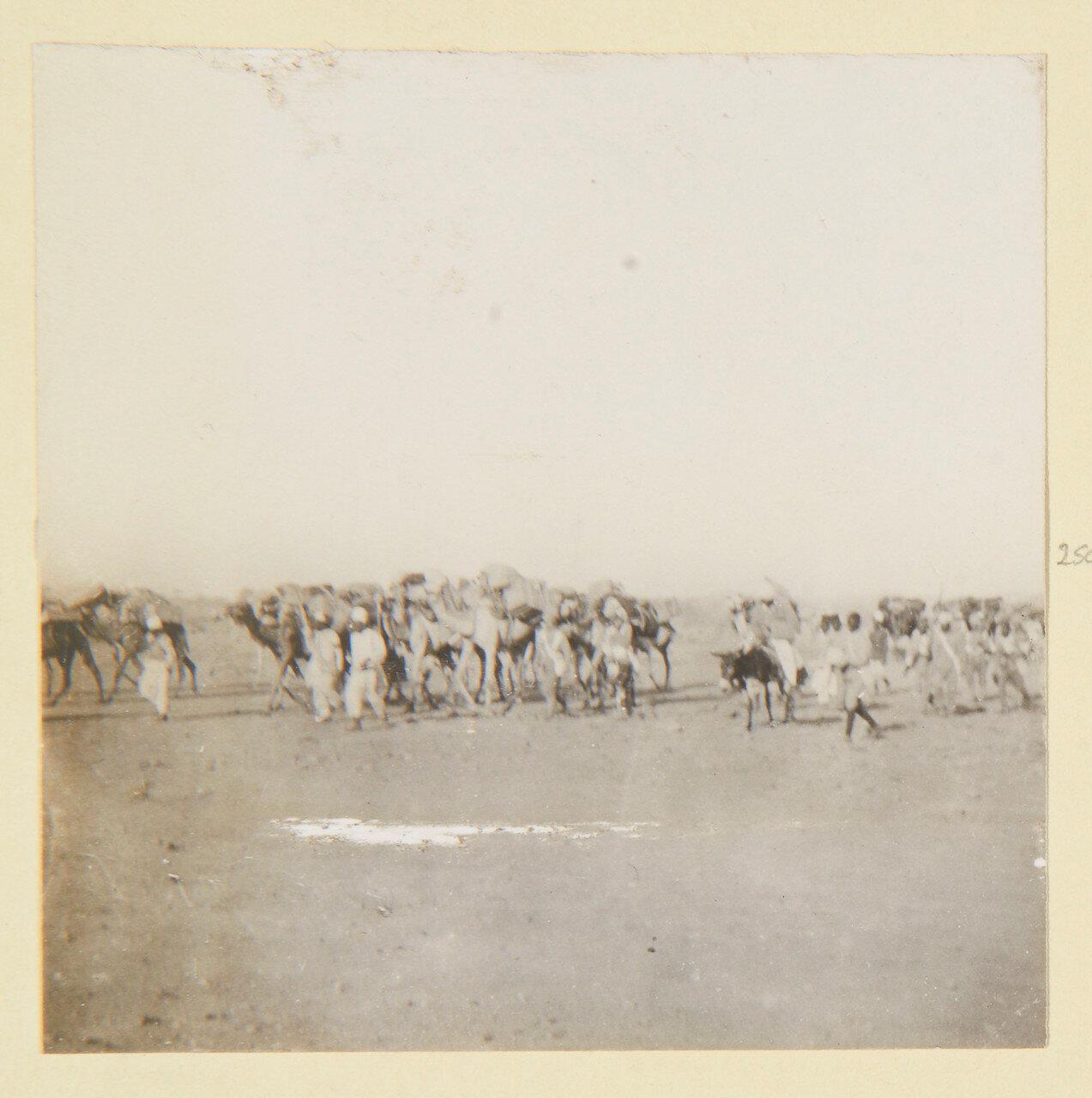 Август 1898. На марше