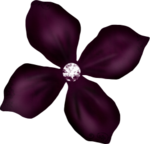 flower11.png