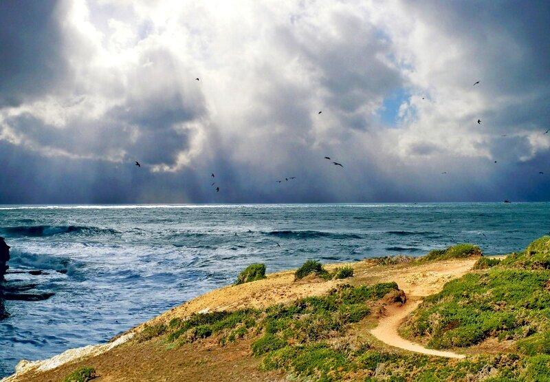 У самого синего моря...