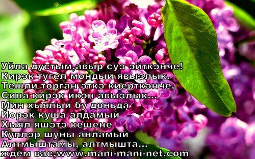 На татарском языке юлдаш поздравления на