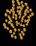 «DBV Gold Rush» 0_58b2c_c884b5ac_S