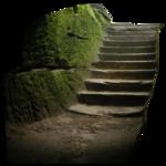 лестницы,ladders