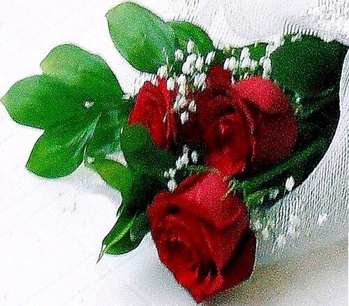 Розы крупным планом.