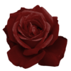 Crhfgнабор«Просто любовь» 0_61319_41aa39a6_XS