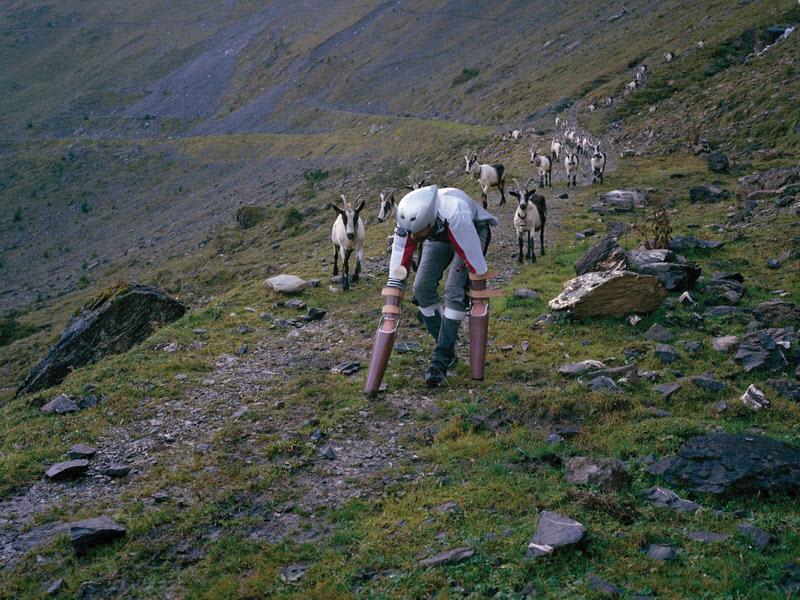 Британский дизайнер козёл