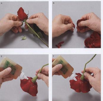 Мастер-класс по изготовлению розы