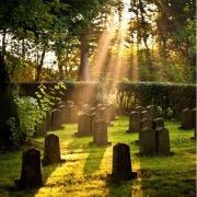 искать выход с кладбища сонник