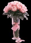 rosenrosa005.png