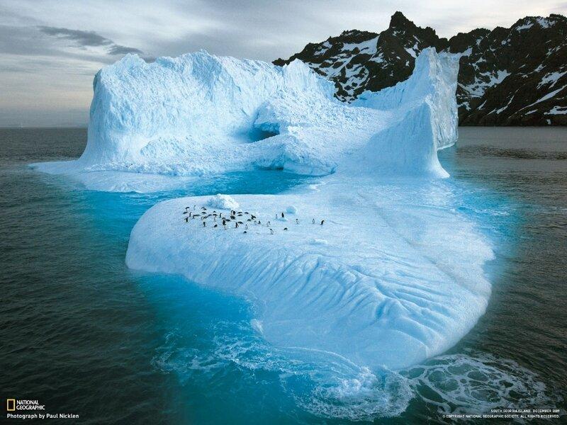 Фотографии общества National Geographic 5
