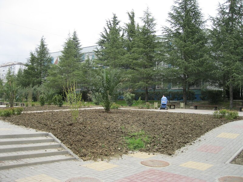 Новый парк
