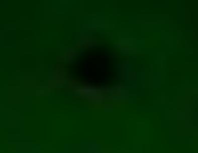 НЛО на Солнце! (фото+фильм) 0_5fcef_f89f2da7_L
