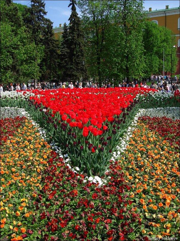 http://img-fotki.yandex.ru/get/5504/sergey-2021.10/0_5446a_ac8b5367_XL.jpg