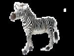 африка животные 0_509a0_cb319e4b_S