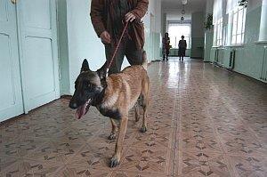 В Приморье началась операция «Территория безопасности»