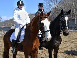 Завтра начнётся открытое первенство по конному спорту во Владивостоке