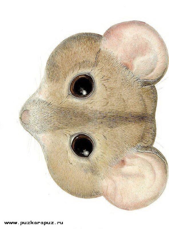 Маска мышки на голову распечатать - Лучшие поделки вы найдете здесь