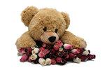 Ours avec des roses