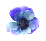 BLUE by_Mago74 el (77).png