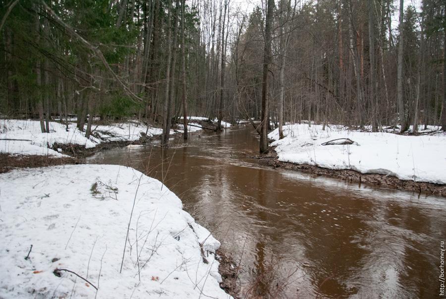 река Саровка весной